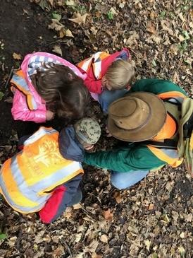 Testimonials Children Foraging in Woods