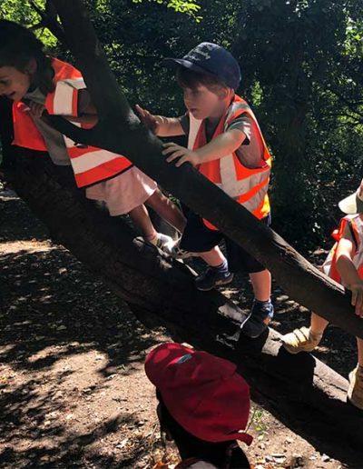 WIld About Play Outdoor Nursery Pre School Putney London 6