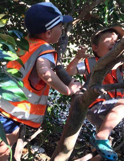 WIld About Play Outdoor Nursery Pre School Putney London