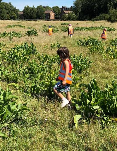 Wild About Play Holiday Camps For Kids in Putney London