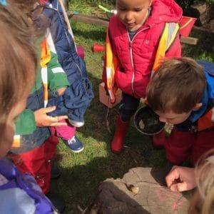 Children surround a snail on a log