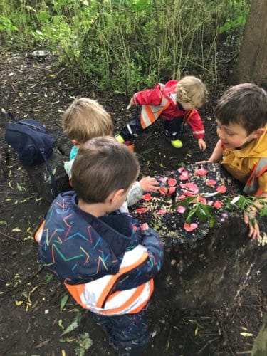 wild about play outdoor nursery forest school putney wild flowers