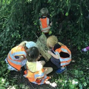 children in a tree