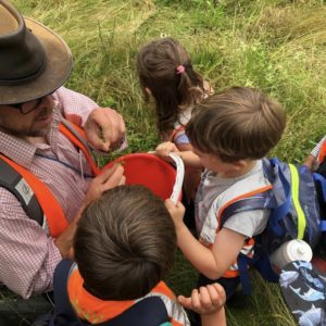children foraging wap wild about play forest school nursery outdoors putney common