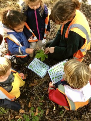 Children ID leaves on the Common