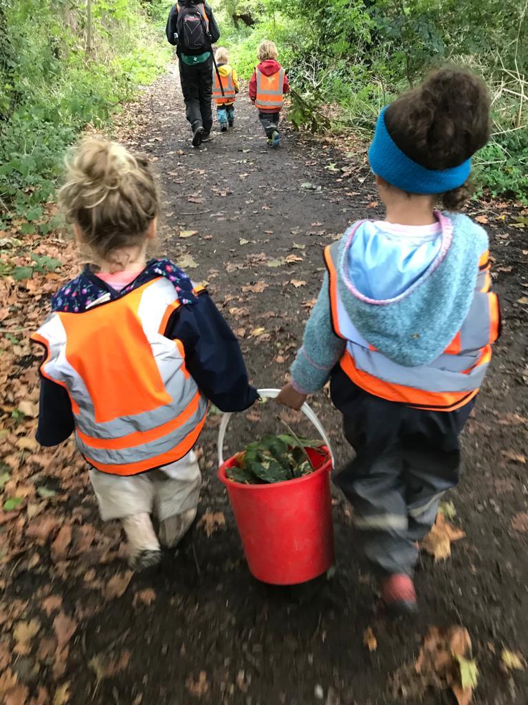 teamwork foraging children wild about play putney